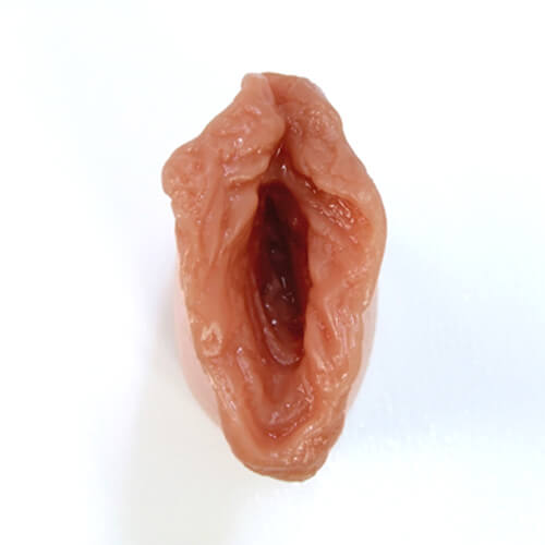 images, inserts extractibles pour nos poupees en silicone